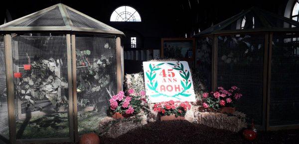Exposition 2019 – 45 ans de l'AOH